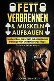 FETT VERBRENNEN & MUSKELN AUFBAUEN: Stoffwechsel ankurbeln mit optimiertem Trainings-Plan und Ernährungs-Tipps