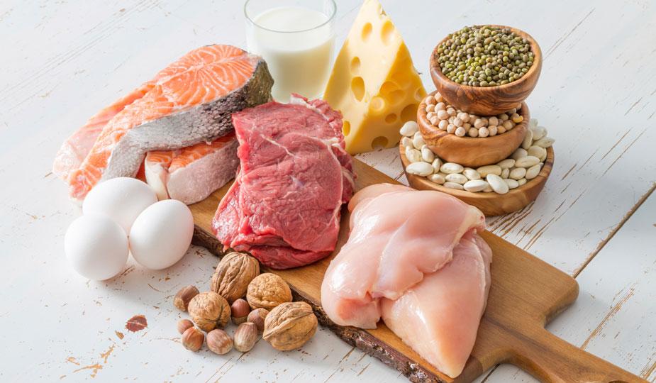 Diät Lügen Proteine