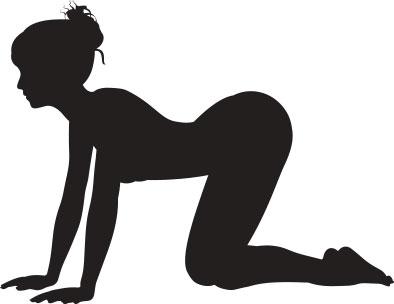 Yoga Katze Kuh