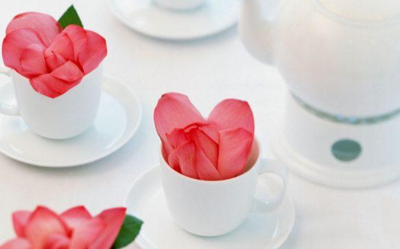 Die Menstruationstasse: Eine echte Alternative zu Tampon und Binde?