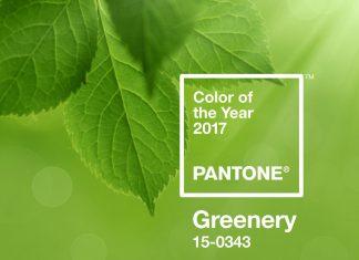 Pantone Farbe des Jahres 2017 Greenery