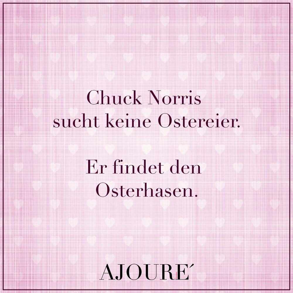 Chuck Norris  sucht keine  Ostereier.  Er findet den  Osterhasen.