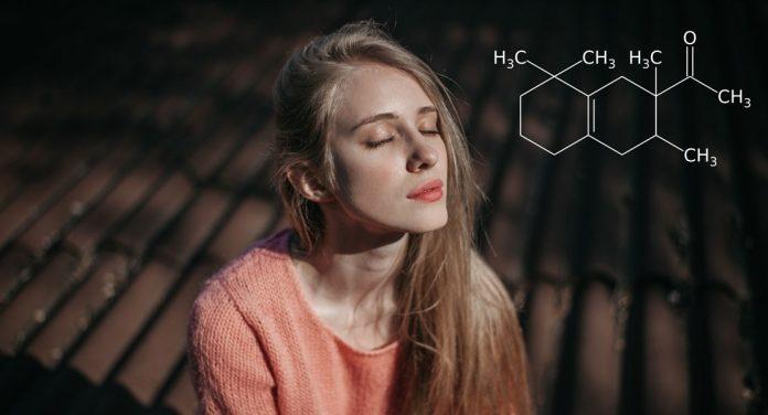 Tanz der Moleküle: Diese Düfte haben es in sich