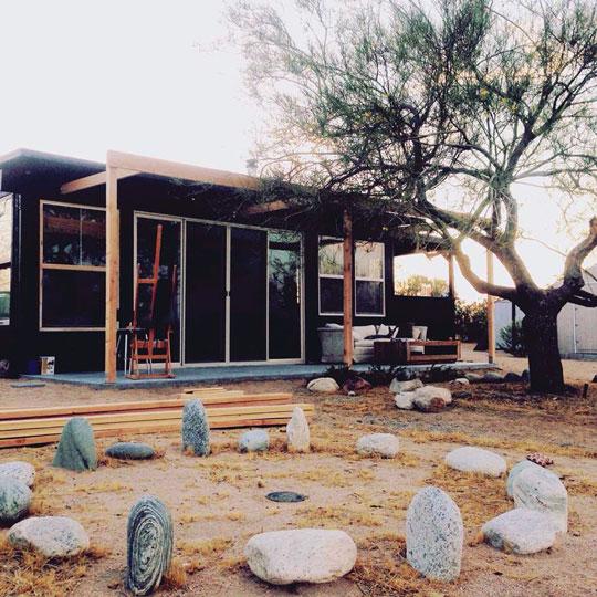 Patti Young Wüste