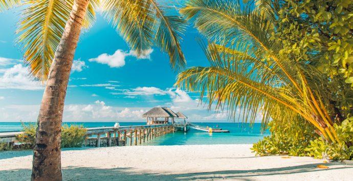 Beim Urlaub buchen sparen –  Diese Studie verrät das größte Einsparpotential