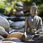 Ojas: Stärke deine Lebenskraft und entdecke den Schlüssel zum Glück