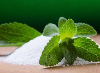 Stevia: Wie gesund ist die Zucker-Alternative wirklich?