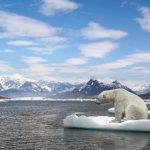 Was bedeutet es wenn sich das Klima weiterhin so erwärmt?