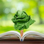 Mit diesen Tipps kannst du deinen Papiermüll reduzieren