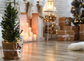 Die besten nachhaltigen Weihnachtsbaum-Alternativen