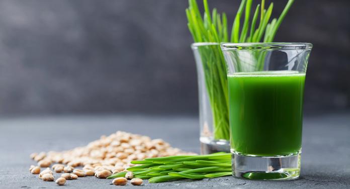 Wie gesund ist Weizengras wirklich? Das Superfood im Check!