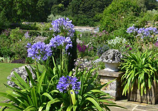 Garten im Frühling: Die besten Tipps für einen schönen Garten!