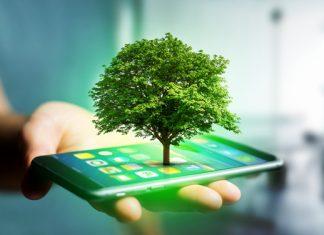 Die besten Öko-Apps für ein nachhaltigeres Leben