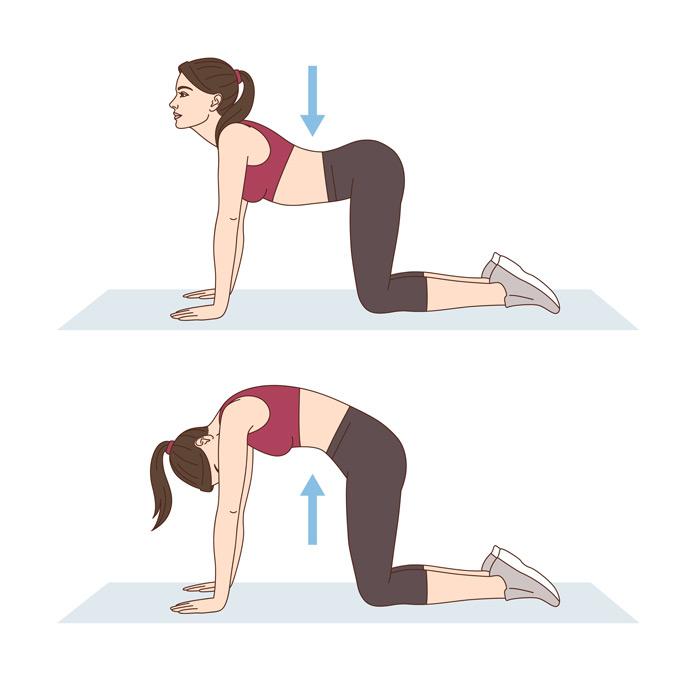 Katze-Kuh-Übung bei Schmerzen im unteren Rücken