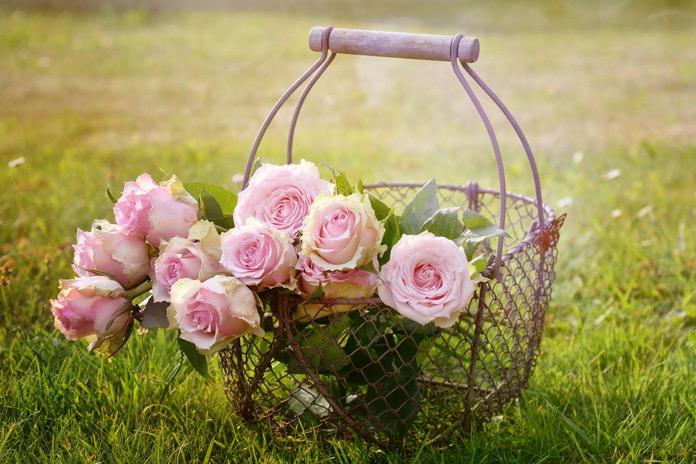 Rosen Duftkerzen