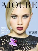 Cover Monat Februar 2013