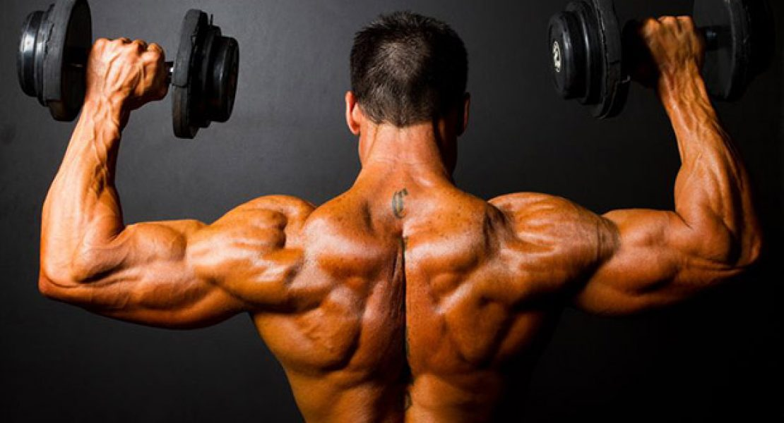 Muskelwahn – Ist das noch sexy?