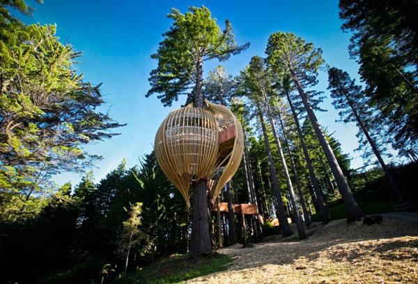 Redwoods Treehouse